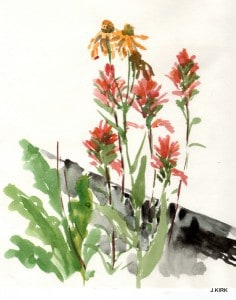 Indian Paint Brush and Rudbeckia