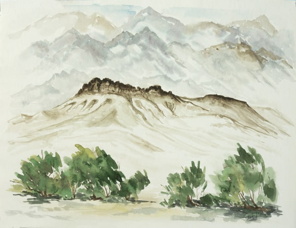 Out Sketching. Painting En Plein Air. Death Valley Vista with Smoke Trees
