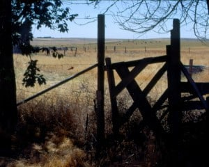 Old yard gate, Frederick Farm, Akron, Colorado